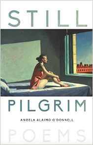 STILL PILGRIM_FINAL COVER_AMAZON